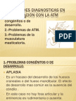 Entidades diagnosticas en relación con la ATM