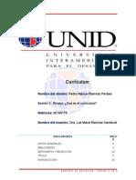 Semana 2 Curriculum Ensayo Pedro Manuel