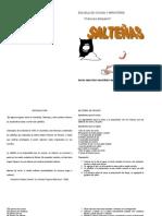 SALTEÑAS-3