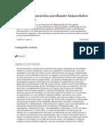 La Fitodepuración Mediante Humedales Artificiales