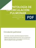 10 - Fisiopatología de La Circulación Pulmonar 2013