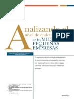 Analizando a Las Micro Empresas