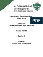 Practica 2 Quimica Aplicada.docx