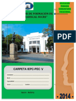 CARPETA_IEPC-PEC_5to_2014