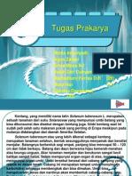 Tugas Prakarya.