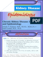 Epid PGK 2009
