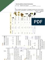 2 Medio - Guía Grupos Funcionales