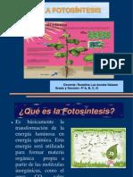 fotosintesis-120610123345-phpapp02