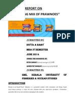 Divya''Marketingmix of Prawnoes