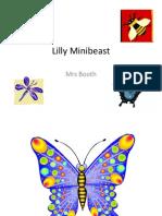 lilly minibeast