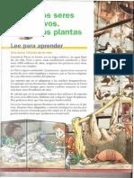 Tema 1- Los Seres Vivos. Las Plantas