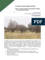 L'Approcio Ecosistemico Alla Xilella