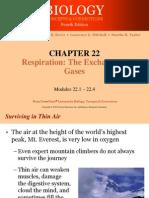 2. Animal Respiration