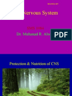 2 CNS Protection