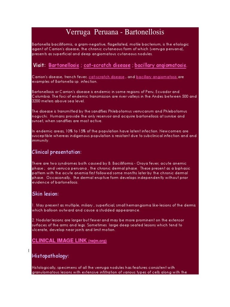 Bartonella bacilliformis | Cutaneous Conditions | Medical