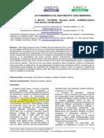 Artigo_Rita.pdf