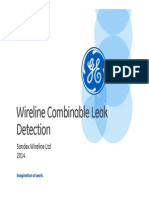 Leak Detection Sales Presentation[1]