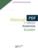 CTO - Anatomía