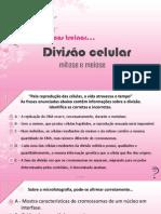 exercciosdivisocelularmeioseemitose-111124032719-phpapp01