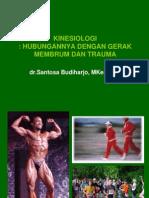 Kinesiologi Upper Limb &Lower Limb
