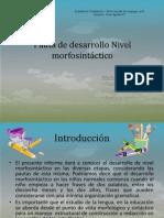 desarrollo morfosintactico