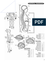 Princeton Review Anatomy Coloring Workbook