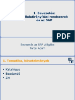 Bev_SAP-1_2012