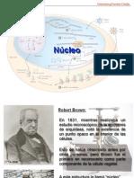 1-Nucleo y Estructura Cromosomica_2014_TM (1)