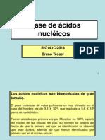 esta+de+ácidos+nucléicos