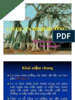 Chuong 3 (Re)