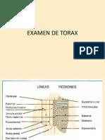 Semiologia Del Torax Expo