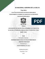 Informe Tesis (14!12!10) Resum