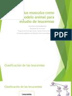 2014 Mus musculus como modelo animal para estudio de leucemias_FACEN Biotecnología.pdf