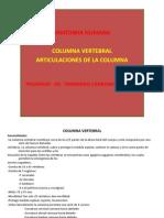 Columna Vertebral Parte i PDF