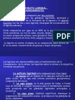 1.4_Alt_Aparato_Lagrimal