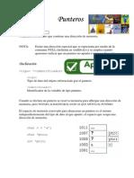 PUNTEROS 035353