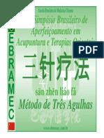 Técnica Das 3 Agulhas Simpósio XII - San Zhen