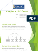 Advanced Linux Chapter v DNS