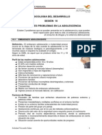 Diagnostico Del Des- Integral Del Adolescente