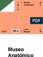 Museo Anatómico - Luna Miguel