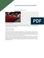 Space Requirements Auditorium