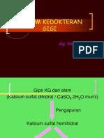 GIPSUM (1)