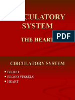 Circulation and the Heart