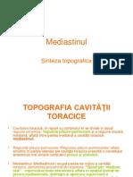 filehost_Mediastinul