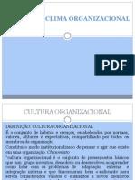 Cultura e Clima Organizacional 1