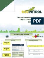 Desarrollo Del Fomento Del Trabajo Seguro, Limpio y Saludable en Ecopetrol