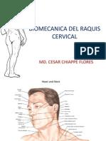 Biomecanica Cervical