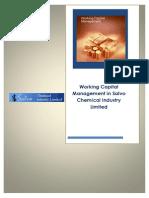 report on salvo chemical finacial analysis