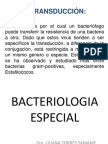 bacteriologiaespecial-120814163532-phpapp02