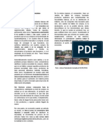 Nuevos Habitos del Consumidor Venezolano.docx